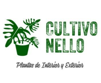 Cultivo Nello