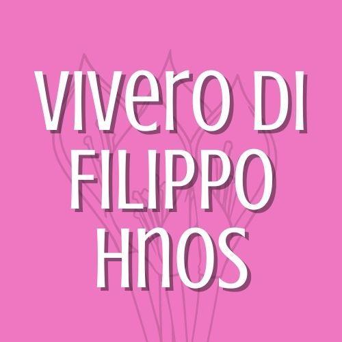 VIVERO DI FILIPPO HNOS