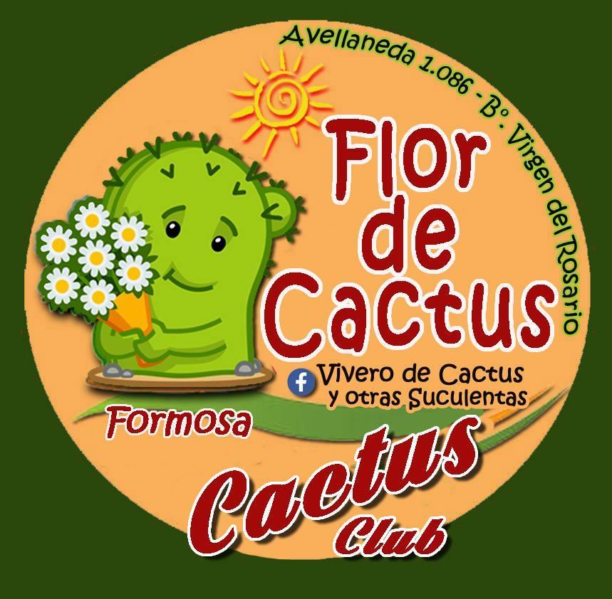 FLOR DE CACTUS FORMOSA