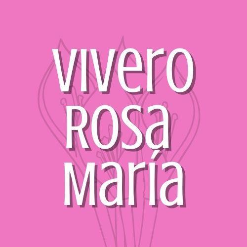 VIVERO ROSA MARIA