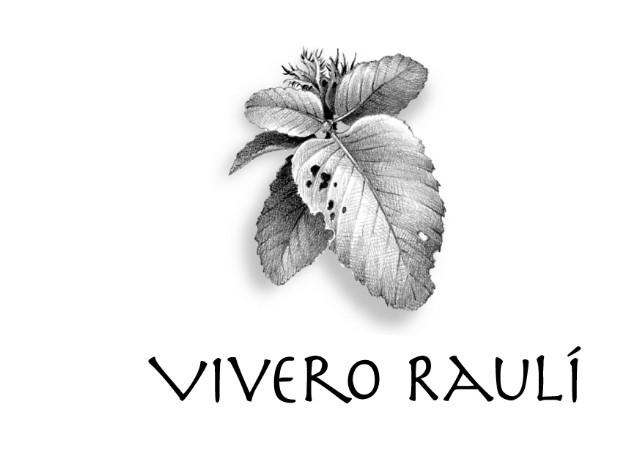 Vivero Raulí