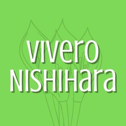 Nishihara