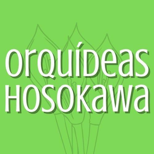 Orquídeas Hosokawa