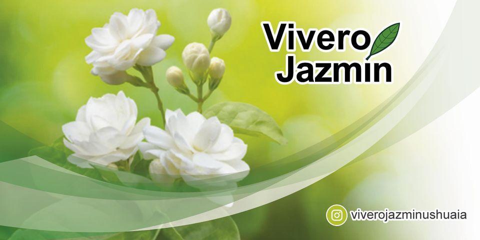 Vivero Jazmín