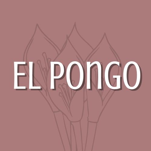 El Pongo