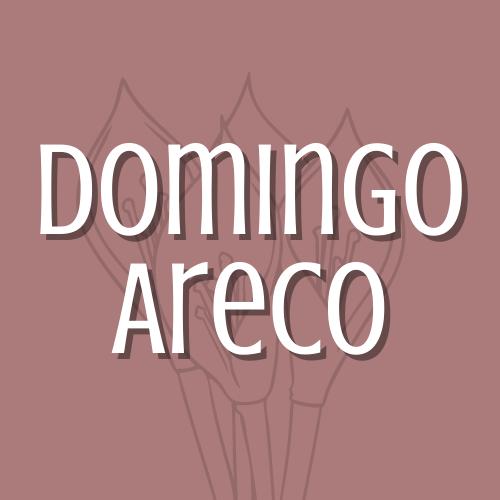 Domingo Areco